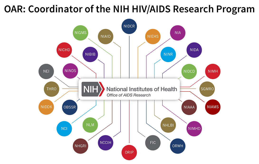 A diagram that shows the relationship between the NIH Office of AIDS Research and the NIH Institutes, Centers, and Offices that support HIV/AIDS research. The Office of AIDS Research logo appears in the center of the diagram and is connected by lines to 28 multicolored small circles that surround the Office of AIDS Research logo. Each circle represents a different Institute, Center, or Office and contains the abbreviation for the Institute, Center, or Office.